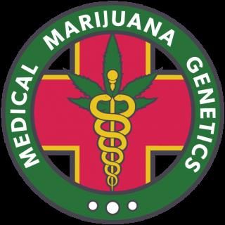 Nightingale NN1 medical marijuana genetics 35,00€