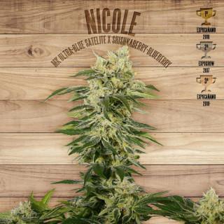 Nicole The Plant Organic 36,00€