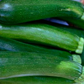 Courgettes Verte de Milan Black Beauty