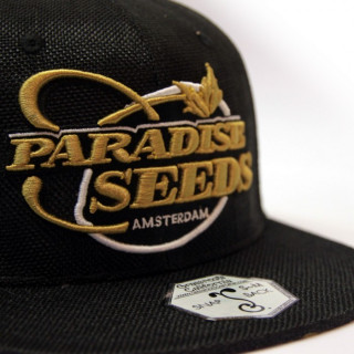 Casquette Paradise seeds - Gold Hemp Snapback 35,00€