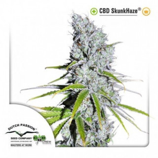 CBD Skunkhaze Dutch Passion 29,95 €