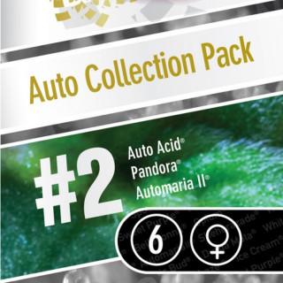 Auto collection pack 2 paradise seeds féminisée