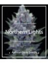 Amsterdam Seeds - Northern Lights FEM