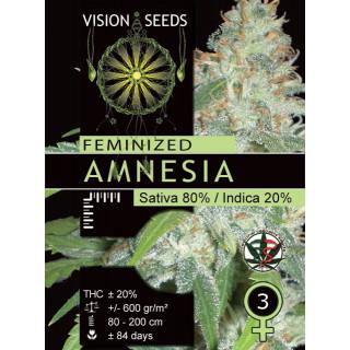 Amnesia vision seeds féminisée 25,00€
