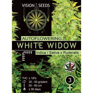 White widow auto vision seeds 17,50€