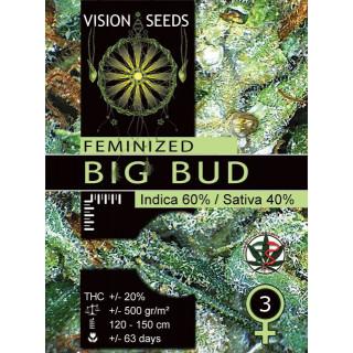 Big bud vision seeds féminisée 22,50€