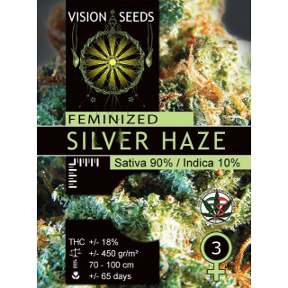 Silver haze vision seeds féminisée 21,00€