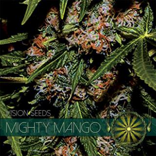 Mighty mango bud vision seeds féminisée 17,50€