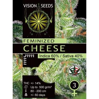 Cheese vision seeds féminisée 17,50€