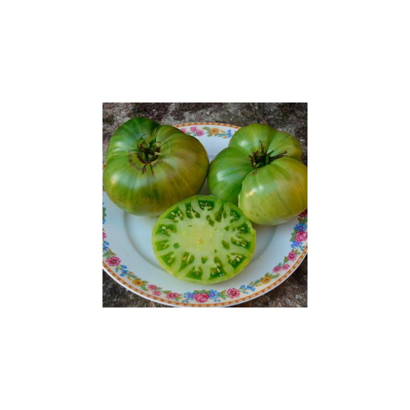 Tomate verte absinthe bio sachet de 35 graines