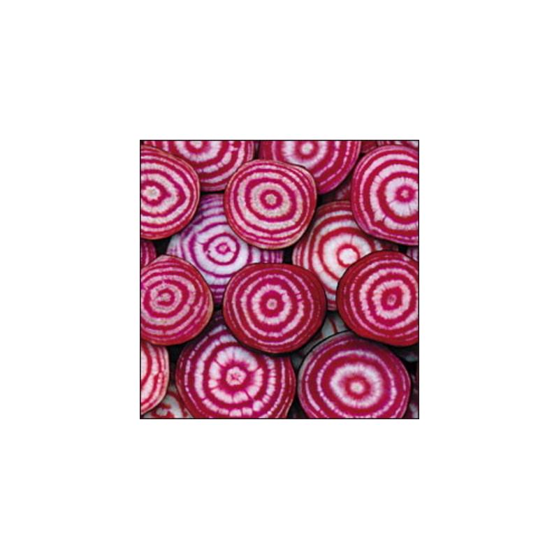 Betterave rose et blanche de chioggia bio - sachet 6 gr 3,40€