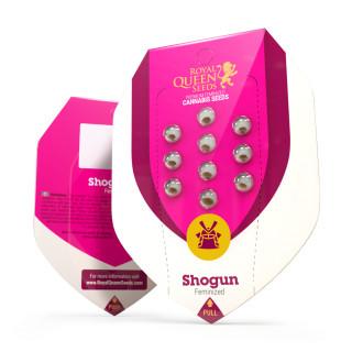 Shogun royal queen seeds féminisée
