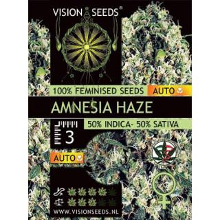 Amnesia haze auto vision seeds 22,50€
