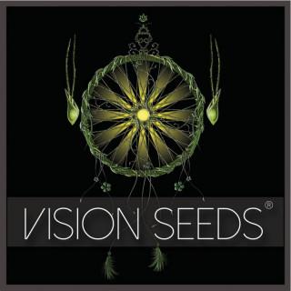 Wedding cake x triple OG vision seeds
