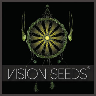 White widow féminisée vision seeds 17,50 €