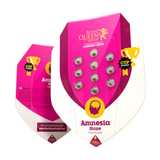 Amnesia haze féminisée royal queen seeds