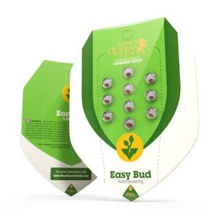 Easy bud auto royal queen seeds