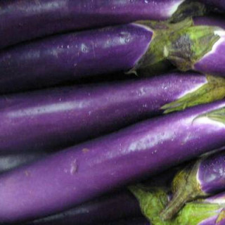 Aubergine Thai Long Purple sachet de 30 graines- Kokopelli