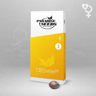 CBD relief Paradise Seeds - Féminisée