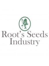 Root's Seeds St Paul Trois Châteaux